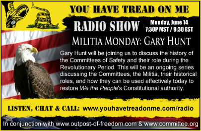 Gary Hunt,Committees of Safety and Protection,Committees of Correspondence,you have tread on me,randymack,militia